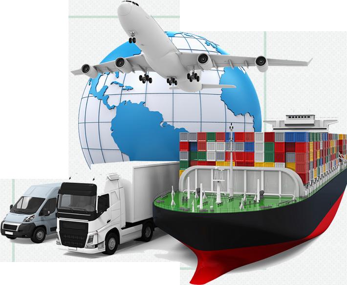 Export & Global Markets